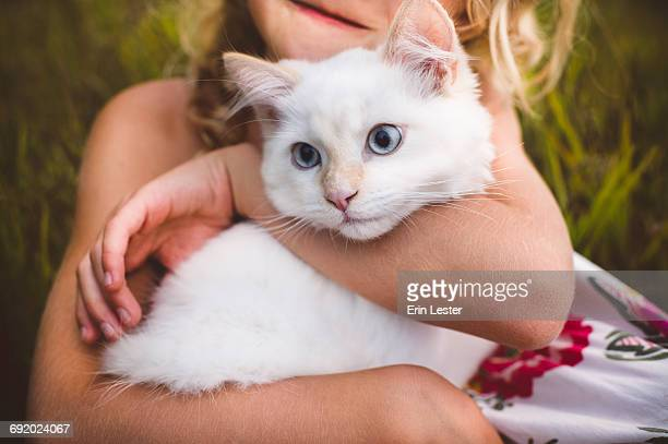 Cropped view of girl hugging cat