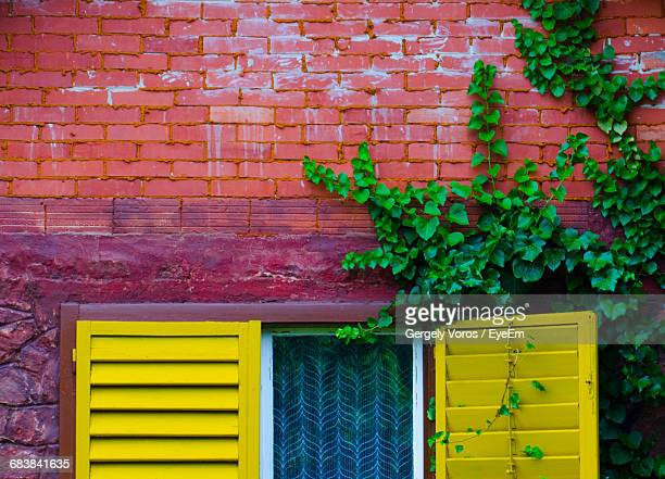 Cropped View Of Window Shutter And Brick Wall
