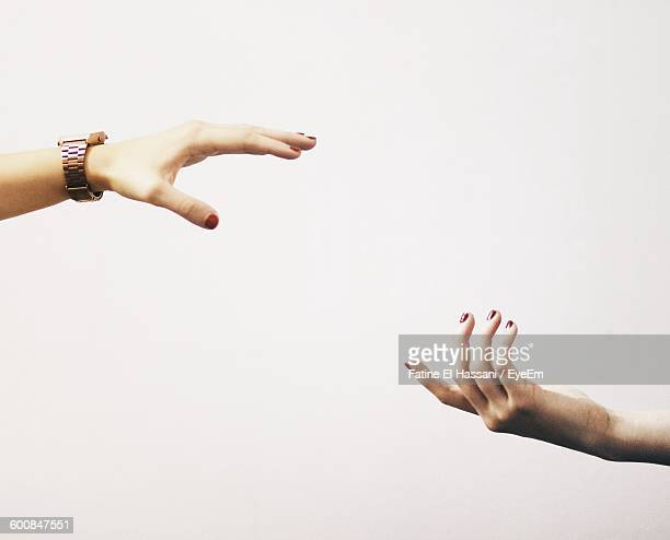 Cropped Women Hands Against White Background