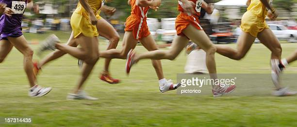 cross country in motion