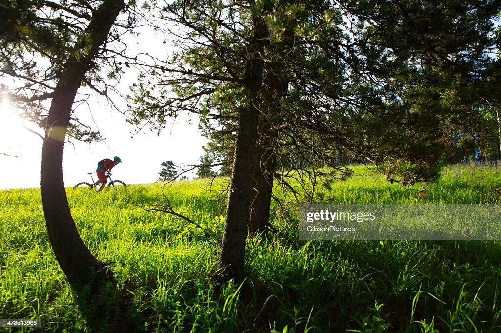 Ciclista de montaña en campo : Foto de stock