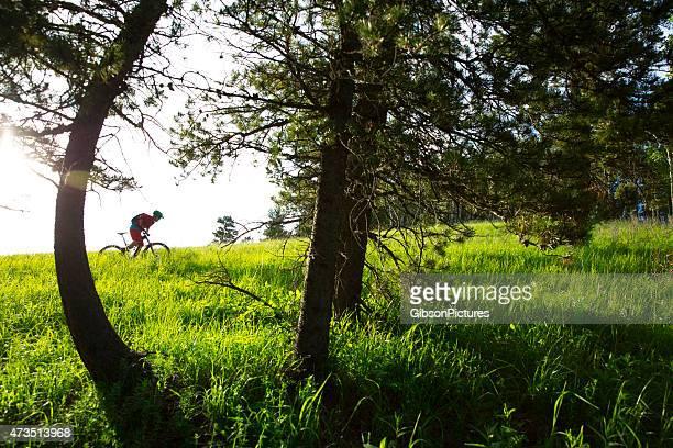 ciclista de montaña en campo - cross country cycling fotografías e imágenes de stock