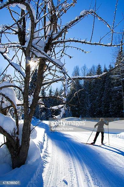 Cross Country Ski Girl