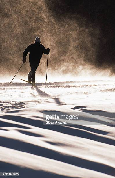 cross country ski - langlaufen stockfoto's en -beelden