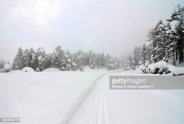 Cross country ski route in Maloja.