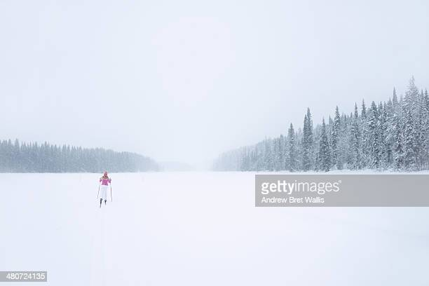 Cross country skier on a Winter trail