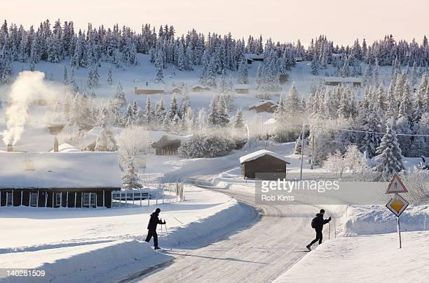 Cross country skiers crossing road