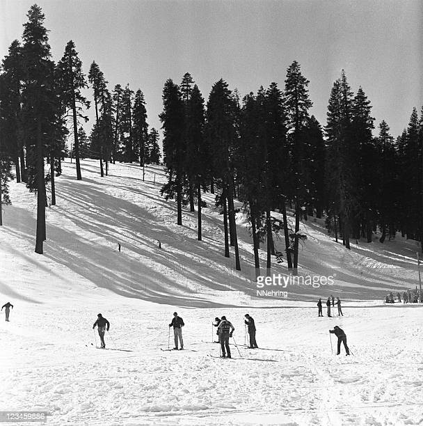 cross country ski Badger Pass, Yosemite 1950, rétro