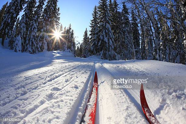 cross country skiing in oslo, norway - langlaufen stockfoto's en -beelden
