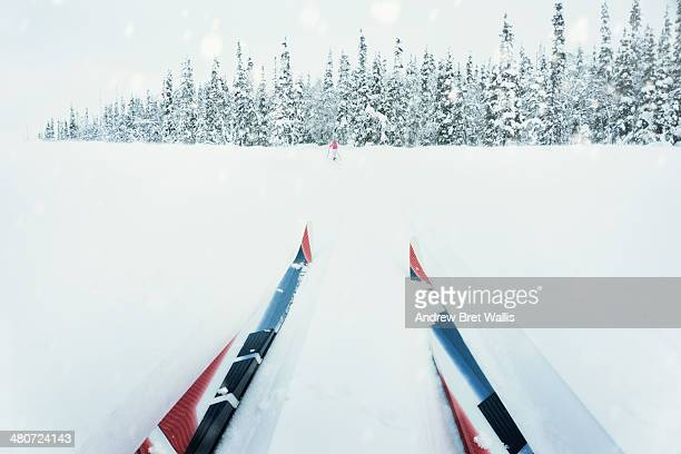 Cross country skis and skier on a Winter trail