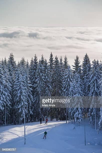 Cross county skiers in Nordmarka, Oslo