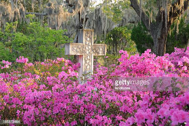 Cross in Cemetery with Azaleas. Live Oaks and Spanish Moss