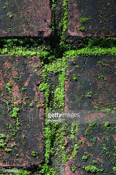 Cross of Moss and Brick