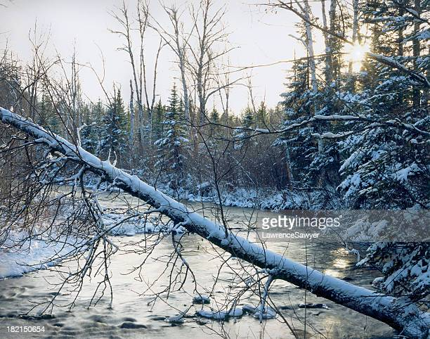 cross river, gunflint trail, bwca - boundary waters canoe area stock pictures, royalty-free photos & images
