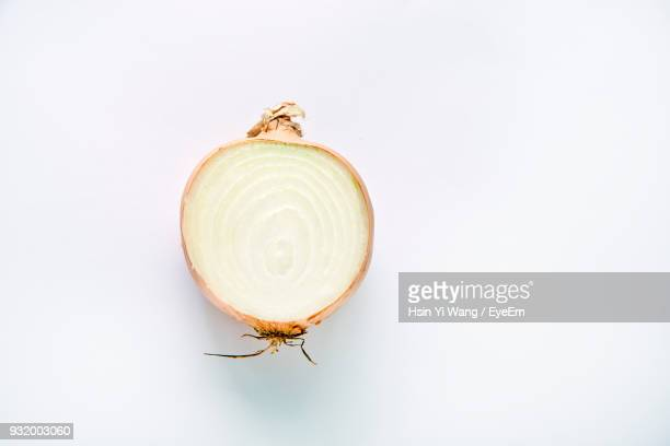 cross section of onion over white background - cebolla fotografías e imágenes de stock