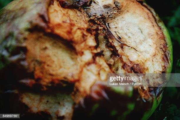 Cross Section Of Rotting Apple