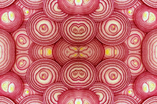 Cross sections of a red onion stacked and manipulated to create duplicates - gettyimageskorea