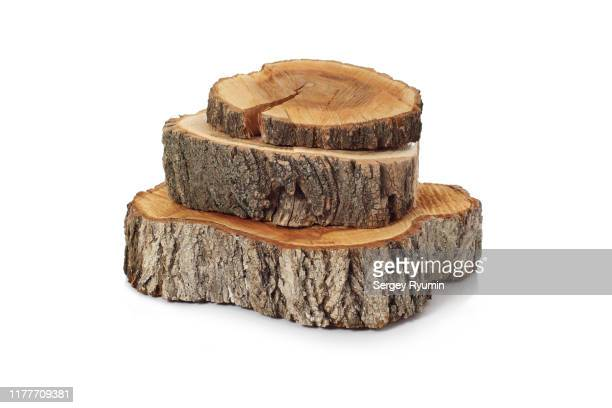 cross sections of tree trunk on white background - log stock pictures, royalty-free photos & images