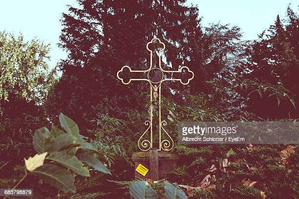 cross with trees in background - albrecht schlotter stock photos and pictures