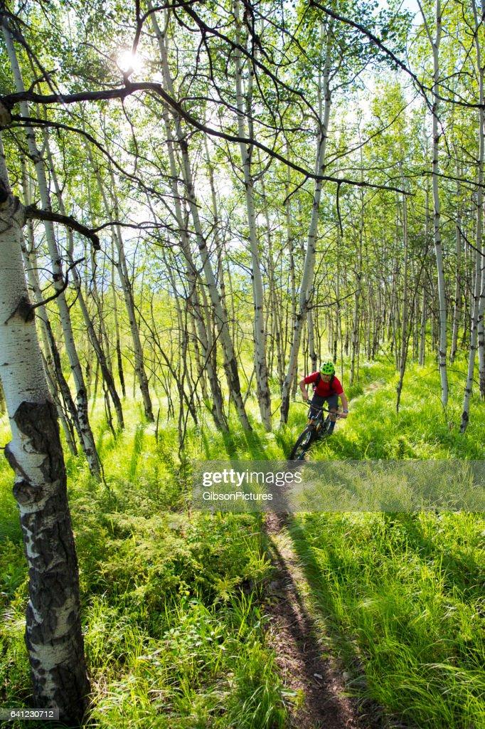Cross Mountain Bike Rider : Foto de stock
