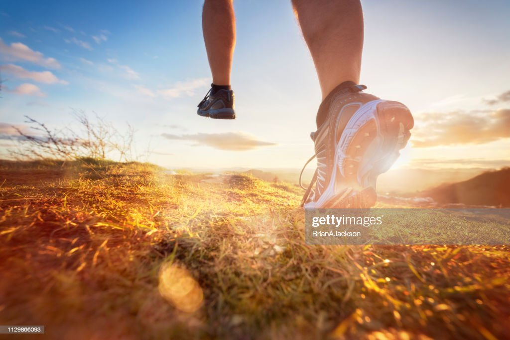 Cross-country running in early morning sunrise : Stock Photo