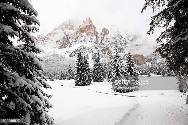 Cross-country ski area