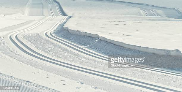 Cross-country ski run track in Gosau Hintertal