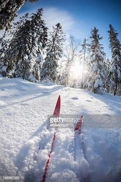 Skilanglauf auf virgin Schnee-Oslo, Norwegen