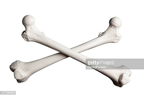 Crossed Bones on a White Background.