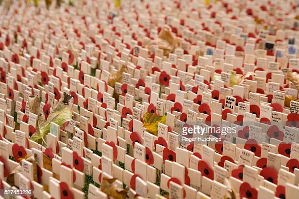 Crosses and poppies in the field of remembrance beside westminster abbey in london where each cross represents a person killed in a particular war...