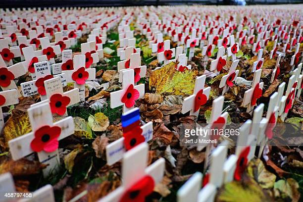 Crosses are placed in the garden of remembrance in Princess Street on Armistice Day on November 11 2014 in Edinburgh Scotland A two minute silence...