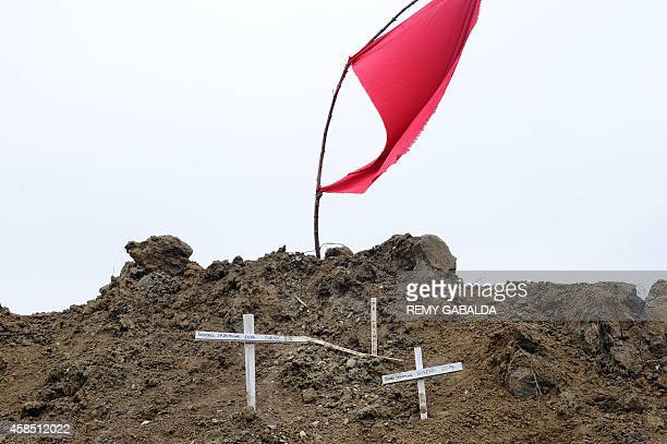 Crosses are seen in the Testet wetland close to the Sivens controversial dam site on November 6 2014 in LislesurTarn as a tribute to Remi Fraisse a...