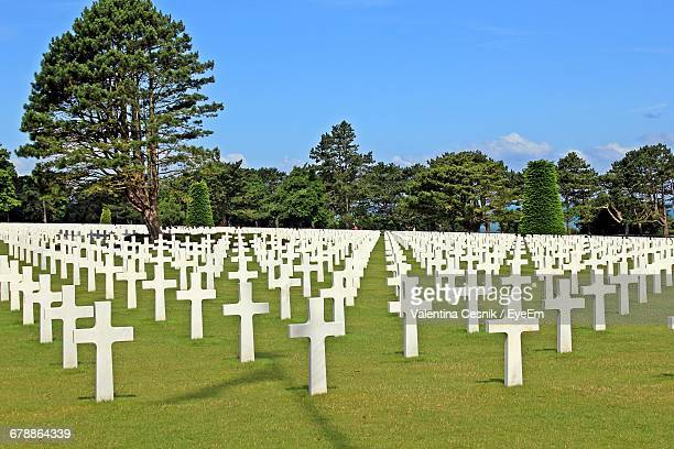 Crosses At Meuse-Argonne American Cemetery And Memorial
