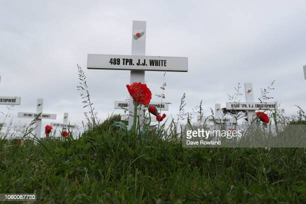 Crosses in the Fields of Remembrance during Armistice Day commemorations on November 11 2018 in Auckland New Zealand Armistice Day 2018 marks the...