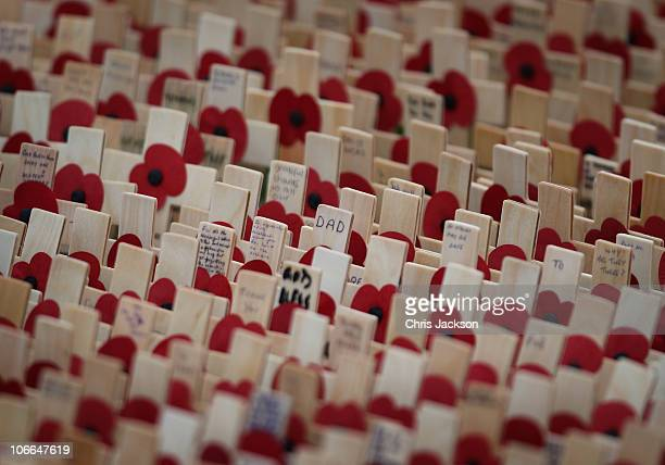 Crosses of Rememberance at the opening of The Royal British Legion Wootton Bassett Field of Remembrance in Lydiard Park on November 9 2010 in Wootton...