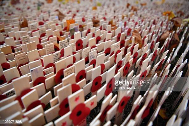 Crosses of Remembrance are pictured in the Field of Remembrance at Westminster Abbey in central London on November 8 2018 In the runup to Armistice...