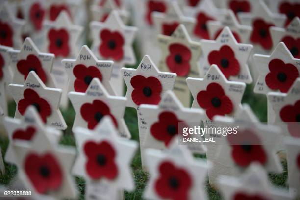 Crosses of Remembrance, bearing the names of fallen soldiers, are pictured in the Field of Remembrance at Westminster Abbey in central London on...