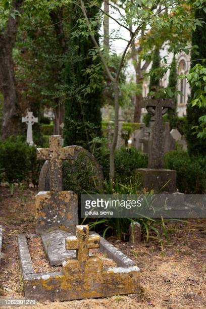 crosses on graves - tomb stock pictures, royalty-free photos & images