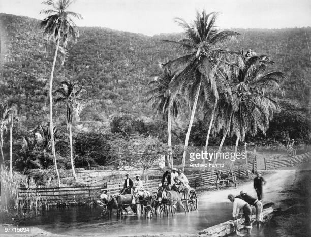 Crossing a River Jamaica