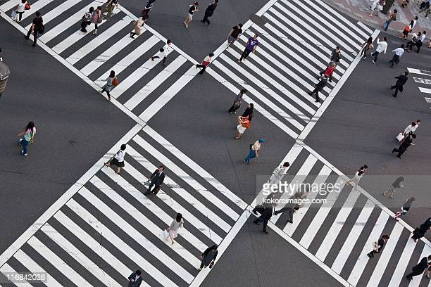 Crossing in Ginza