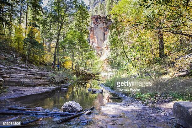 crossing the creek - oak creek canyon - fotografias e filmes do acervo