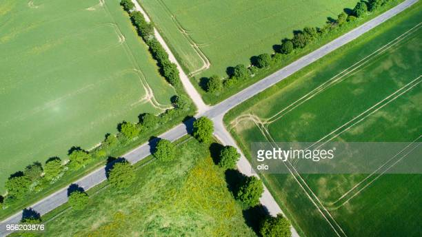 crossroads and wheat fields in spring - crossroad imagens e fotografias de stock
