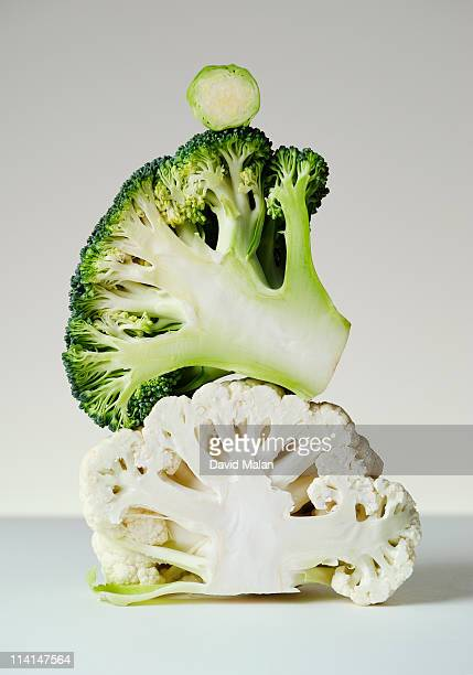 A cross-section of brassica vegatables
