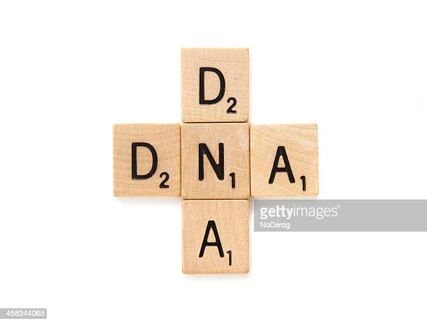 dna crossword  spelled in scrabble letter tiles - brand name stock pictures, royalty-free photos & images