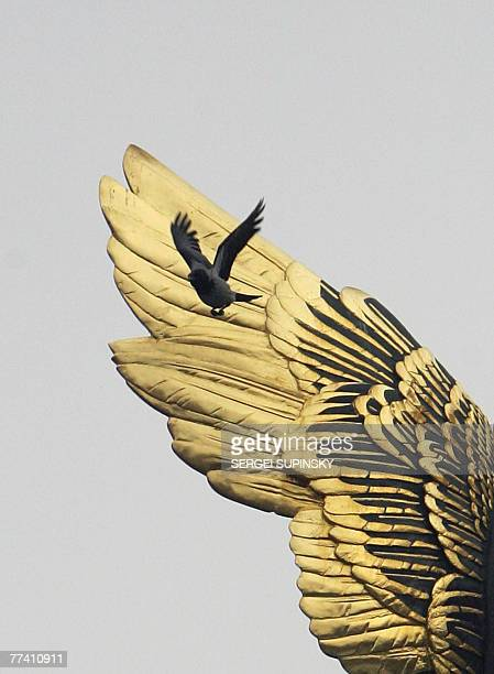 A crow flies near of Archangel Gabriel monument's wing on Kiev's Independence Square 19 October 2007 AFP PHOTO/ Sergei SUPINSKY