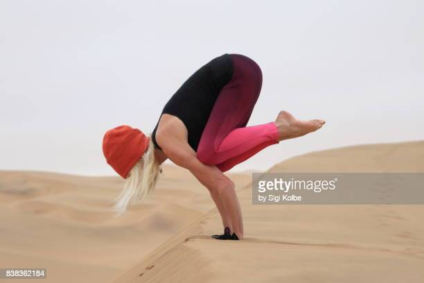 crow on dune - erongo stock photos and pictures