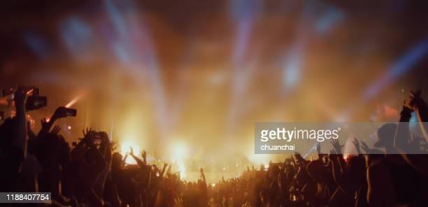 crowd enjoying concert at night - ポップコンサート ストックフォトと画像
