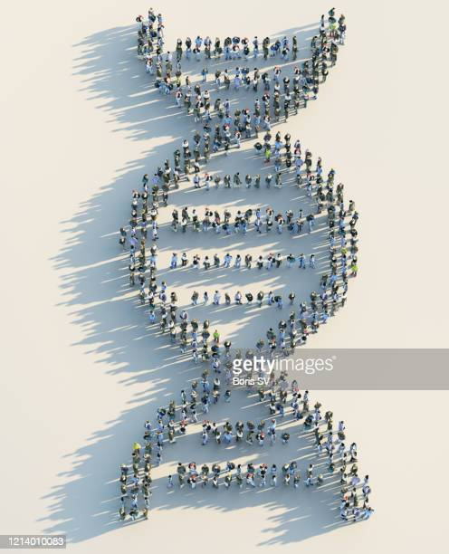 crowd forming dna model - dna ストックフォトと画像