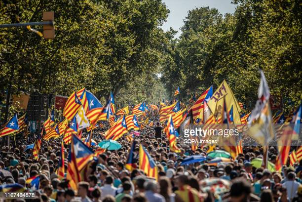 Crowd gathered holding flags during the demonstration for the National Day of Catalonia which has been organized by the Catalan National Assembly