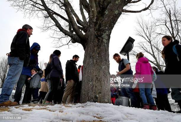 A crowd gathers under a maple tree as it is being tapped for maple syrup at the Mass Audubon's Boston Nature Center and Wildlife Sanctuary in the...